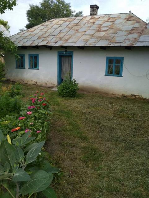 Продам будинок в селі Іванківці